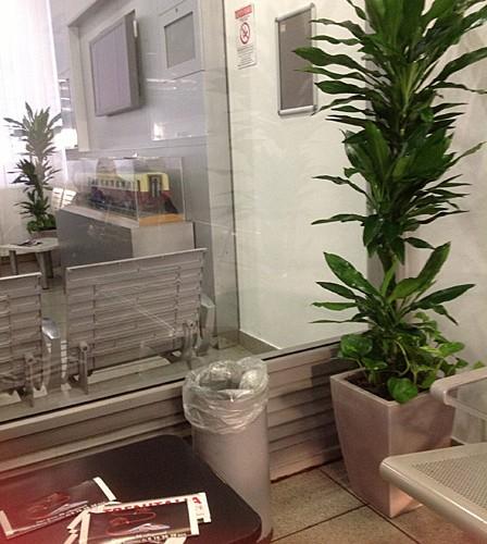 Dettaglio arredamento floreale sala d'attesa - Roma