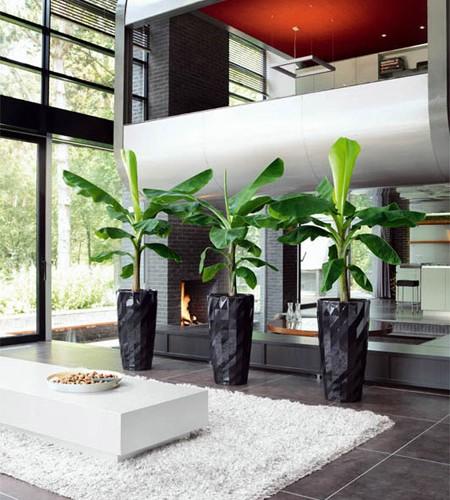 Arredamenti floreali con vasi di ultimissima generazione