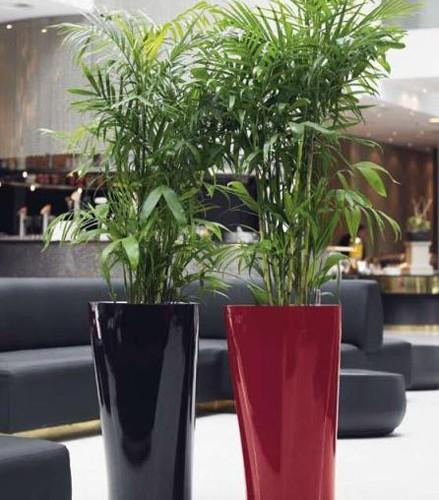 Arredamento floreale interno attività commerciale - Parma
