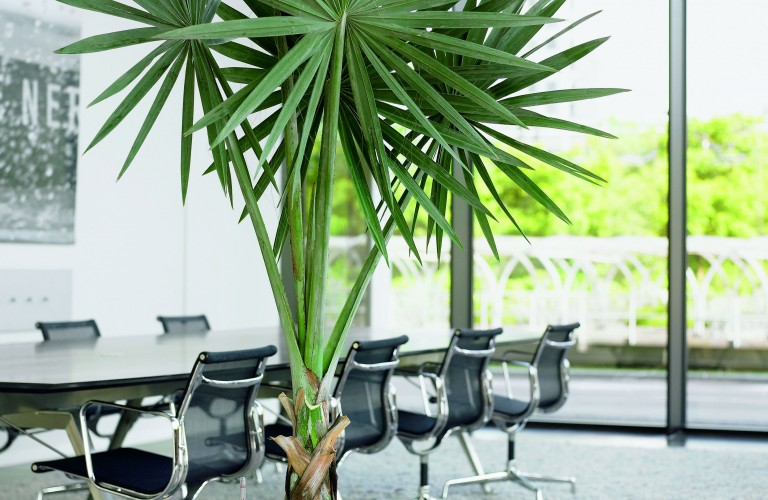 Sala riunioni - Bergamo